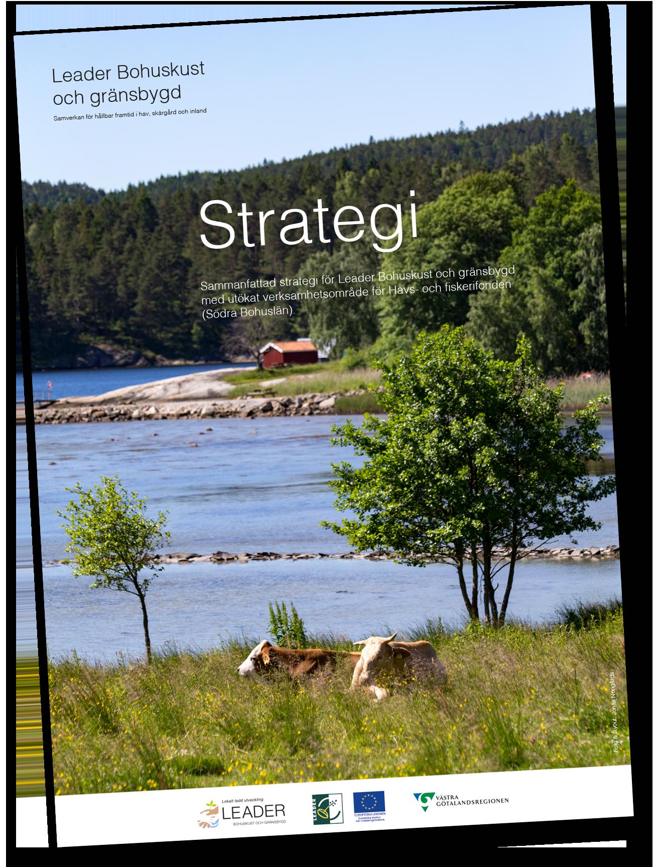 Läs vår Strategi med mål och indikatorer